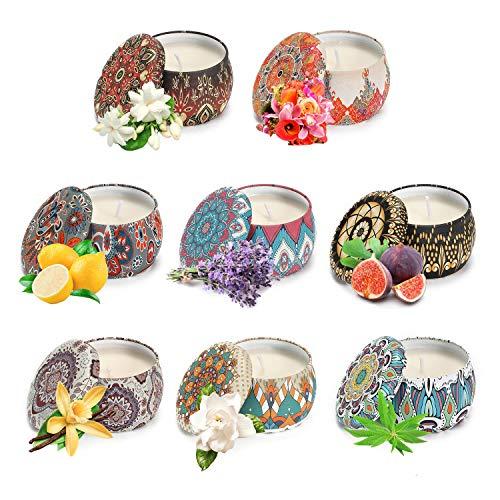 Vinsani Juego de 8 velas perfumadas de lata portátil para mujer, regalo de cera de soja, juego de velas aromáticas, caja de regalo para decoración del hogar