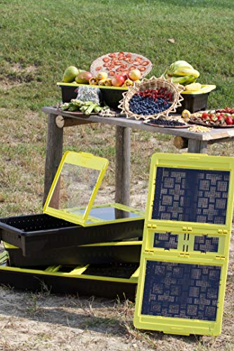 Dehytray-A Portable Solar Food Dehydrator Device
