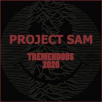 Tremendous 2020