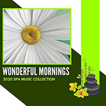 Wonderful Mornings - 2020 Spa Music Collection