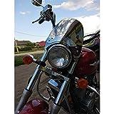 LUJIAN Parabrisas De Motocicleta Universal Apto para Yamaha Drag Star XVS 125250400650 1100 XVS1100 XVS650 Visera De Medidor De Parabrisas De Montaje De Tubo De Horquilla Superior (Color : Chrome)
