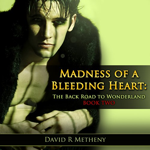 Madness of a Bleeding Heart     The Back Road to Wonderland Book Two              By:                                                                                                                                 David R. Metheny                               Narrated by:                                                                                                                                 Christopher Johnson                      Length: 4 hrs and 37 mins     1 rating     Overall 3.0
