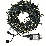 Outdoor Fairy Lights Mains Powered, LED Fairy Lights Outdoor, Shineled 30M 300LEDs 8 Modes Garden Decorative Lights for Christmas Tree, Patio, Garden, Home, Wedding, Party Outdoor, Indoor-Warm White