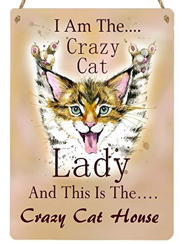 Señal de Gato Colgante de Metal con Texto en inglés «A Crazy Cat Lady»