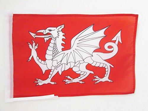 AZ FLAG Flagge WEISSER Drache VON England 45x30cm mit Kordel - ENGLISCHE Fahne 30 x 45 cm - flaggen Top Qualität