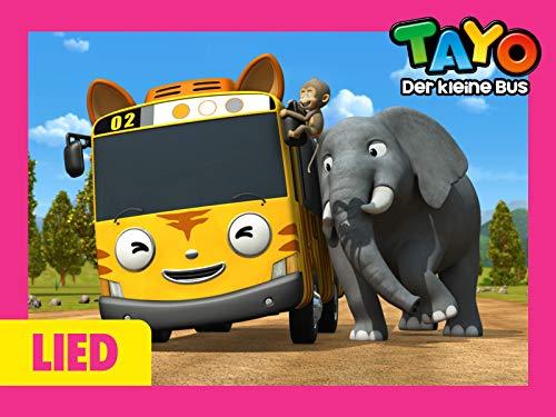 Tayo Lied für Kinder 2 - Ein Safari Abenteuer