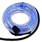 Smartfox LED Lichterschlauch Lichterkette Licht Schlauch 2m für Innen- und Aussenbereich mit 48 LEDs in Blau
