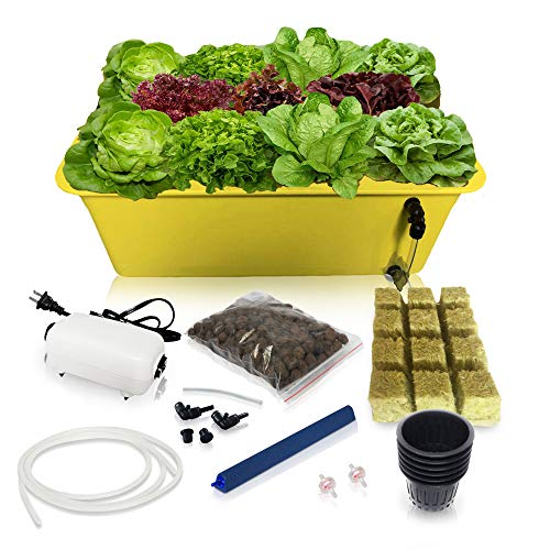 DWC Hydroponics Growing System-Kit - Medium Size w/Airstone, 11 Plant Sites Bucket, Air Pump - Best Indoor Herb Garden for Lettuce, Mint, Parsley - Grow Fast at Home