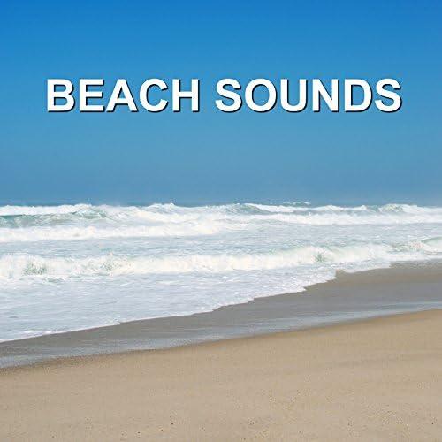 Ocean and Beach Waves