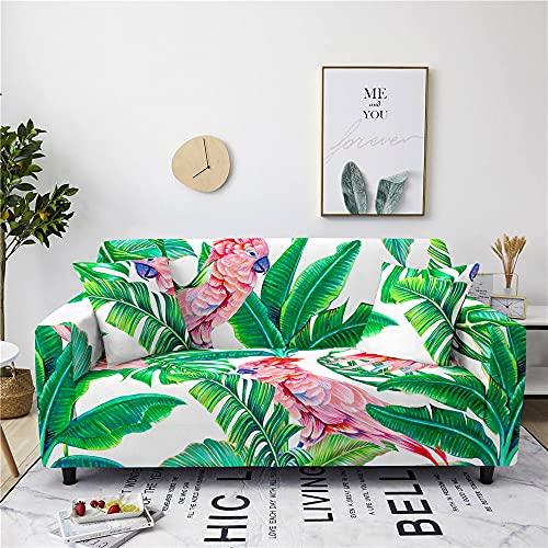 Meiju Fundas de Sofá Elasticas Ajustables de 1 2 3 4 Plazas Impresión Universal Antideslizante Cubierta de Sofá Funda Cubre Sofas Furniture Protector (Loro,3 plazas - 190-230cm)