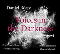 Bortz: Voices in the Darkness
