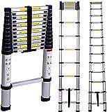 RALPHS 3.8M Tall Telescoping Extension Multi Purpose Aluminium Ladder 330 pound/150kg Capacity