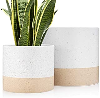 Set 2 Indoor Ceramic Flower Pots for Plants 8 & 6 Inch, Large White Planters with Finish, 2 Color Hand Painted Plant Pot with Drainage with Plug, Modern Luxe Planters for Houseplants