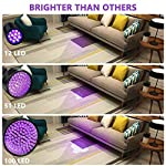 Coquimbo UV Torch 100 LED, Black Light UV Flashlight Ultraviolet Torch Pet Urine Stain Detector, Super Bright Blacklight Detector for Pet Stains, Bed Bug, Carpet, Floor (6 x AA Batteries Included) 12