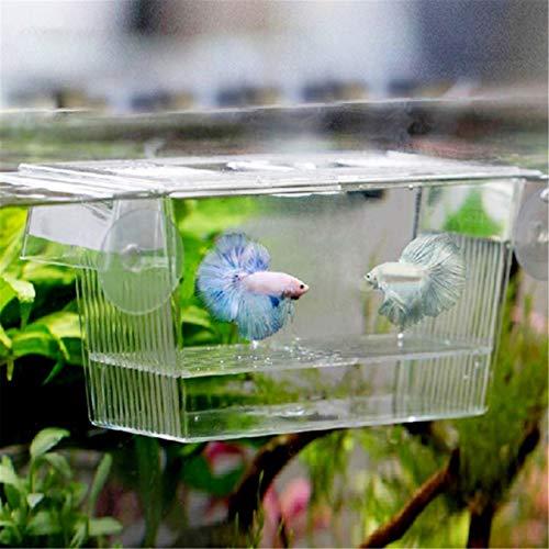 FGJFJ Boîtes D'Élevage D'Écloserie D'Aquarium de Réservoir de Poissons Acrylique Clair Éleveur Isolement Diviseur D'Incubateur D'Incubateur Accessoires