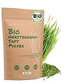 freshroots® 250g Gerstengrassaft Pulver Bio, 100% Gerstengras-Saft Pulver, frei von Zusätzen, für Smoothies und Säfte