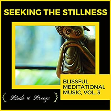 Seeking The Stillness - Blissful Meditational Music, Vol. 3