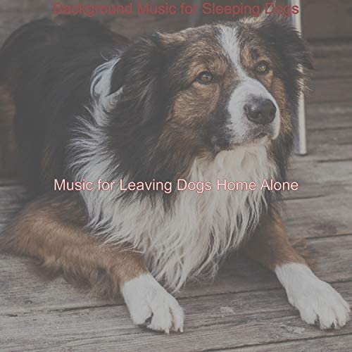 Music for Leaving Dogs Home Alone