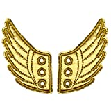 YuQi Shoe Wings Accessory Sports Skating and Parkour Shoe Decorations Charms for Kids and Girls Daily Style Accessories (Dark Gold)