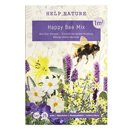 Happy Summer Mix - Blumenzwiebeln für Insekten im Sommer in Geschenkverpackung - mehrjährig, viele botanische Sorten gemischt für idyllisches und buntes Beet im Garten - (Bienen Mix)