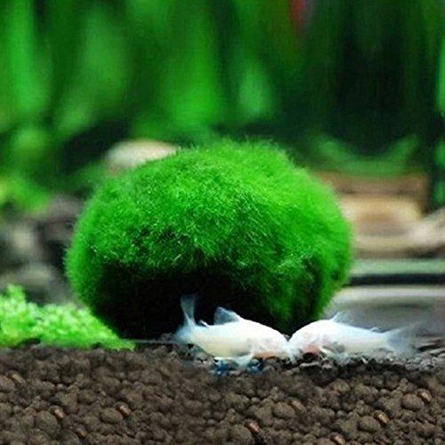 Hemore - Palline artificiali per acquario, decorazione per acquario, per animali domestici
