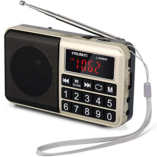 PRUNUS Portable Radio | Amazon.com