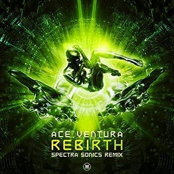 Rebirth (Spectra Sonics Remix)