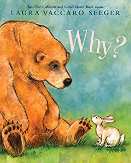 Why? by [Laura Vaccaro Seeger]