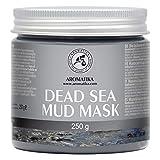 Máscara de Barro del Mar Muerto 250g - Barro del Mar Muerto & Aloe Vera - Mascarilla Purificante e Exfoliante - Ricos Minerales del Mar - Reduce Poros & Piel Muerta - Dead Sea Mud Mask
