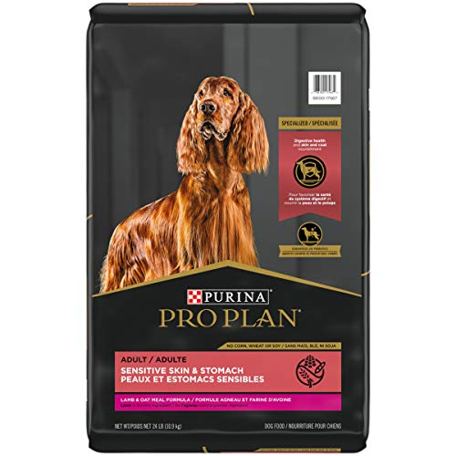 FOCUS Purina Pro Plan Sensitive Skin and Stomach