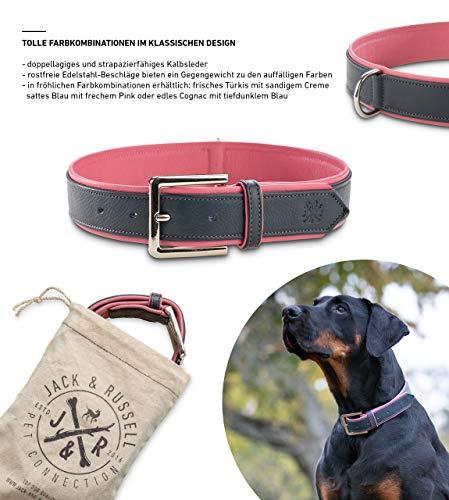 Jack & Russell Premium Leder Hunde Halsband Lilly - Lederhalsband Kalbleder - Hundehalsband Echtleder Lilly (XS, Blau/Pink)