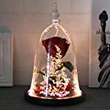Enchanted Rose, DDSKY Beauty and The Beast Handmade Preserved Rose with LED Light in Glass Dome on Wood Base, 100% Real Rose for Christmas Valentine's Day, Red