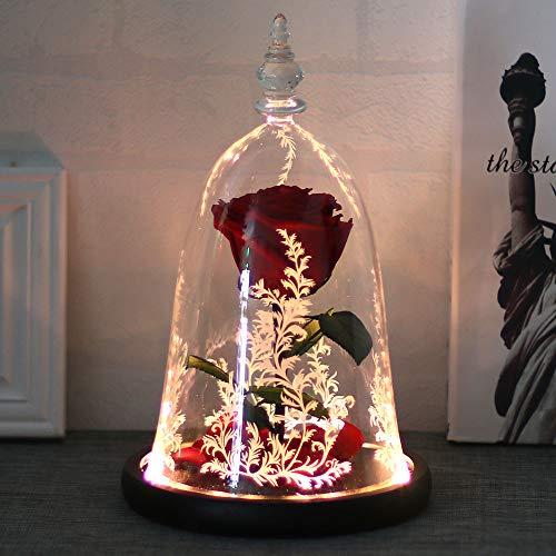 ConpConp Enchanted Rose, Beauty und das Biest Rose Kit Konservierte Blumenrose und LED-Licht mit gefallenen Blütenblättern in Glaskuppel auf Holzsockel für Dekor Hochzeit Valentinstag, Red