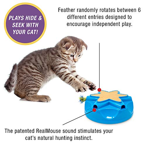 OurPets Catty Whack Interactive Cat Toy (Cat Toys for Stimulating Play, Real Mouse Sound, Rotating Feather for Hunting Instincts & Carpeted Scratching Area) [Cat Toys for Indoor Cat Gifts]