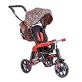 Y-Volution Mondo Toys - Triciclo / Cochecito de Bicicleta para niños - Asa de Empuje, sombrilla, Mochila para Objetos - Desde 12 Meses hasta 3 años, 25193