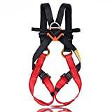 Flowersea Full Body Climbing Harness Kids,Flower Sea9 Climbing Harness Safe Belts Guide Harness Mountaineering Outward Band Expanding Training Caving Rock Climbing Rappelling Equip (S(4-10years))
