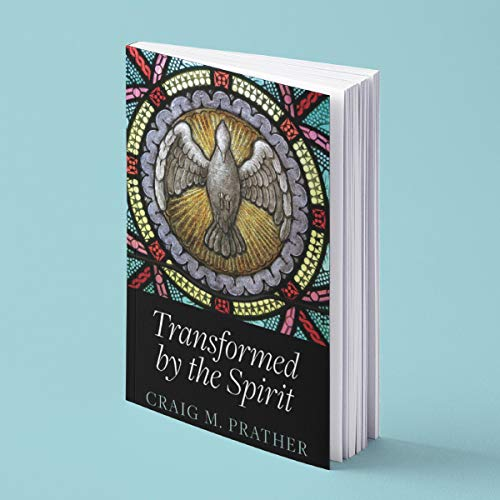 Transformed by the Spirit Audiobook By Craig M. Prather cover art