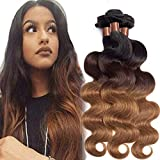 CRANBERRY Ombre Brazilian Human Hair Body Wave 3 Bundles Ombre 1b/4/30 Brazilian Virgin Human Hair Bundles 12 14 16inch Weaves Extensions Wefts 3 Tone 100g/pc