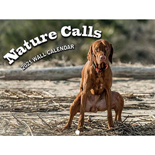 Bireegoo 2021 Hund Wandkalender, lustiger Hund Kalender Geschenke 2021 Kalender Hunde Wandkalender Jan 2021-Dez 2021 Lustige Hunde Pooping Kalender für Freunde Nachbarn