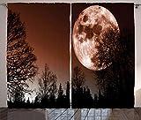 ABAKUHAUS Luna Cortinas, Resumen del Bosque de Color, Sala de Estar Dormitorio Cortinas Ventana Set de Dos Paños, 280 x 245 cm, Redwood Negro