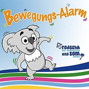 Bewegungs-Alarm
