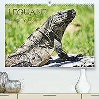 Leguane - Einzigartige Reptilien (Premium, hochwertiger DIN A2 Wandkalender 2022, Kunstdruck in Hochglanz): Leguane - Einzigartige Reptilien aus Mittelamerika auf 13 eindrucksvollen Fotos (Monatskalender, 14 Seiten )