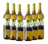 Cava Rovellats - Vino Blanc Primavera - D.O. Penedés - Pack 6 botellas de vino blanco 750 ml – Chardonnay, Macabeo y Xarel-lo - Cosecha 2019