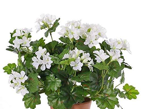 artplants.de Set de 6 x Geranio Artificial BERENIKE con Vara, Zona protegida, Blanco, 40cm, Ø 5-8cm -Pack geranios sintéticos - Plantas Artificiales