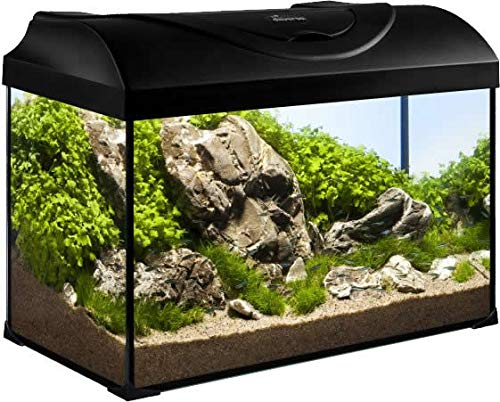 Diversa Aquarium 50er komplett Set 50x25x30 cm rechteck schwarz - 4