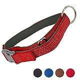 AVANZONA Collar Perro- Collar Nylon Reflectante Acolchado Ajustable para Perros medianos y Grandes, L (Rojo)