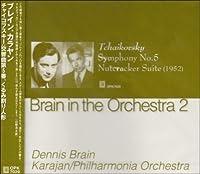 Brain in the Orchestra 2