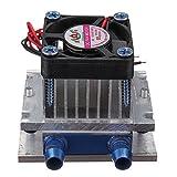 TuToy 12V Termoelettrico Peltier Refrigeration Semiconductor Cooler Raffreddamento Ventola...