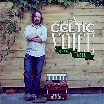 A Celtic Voice