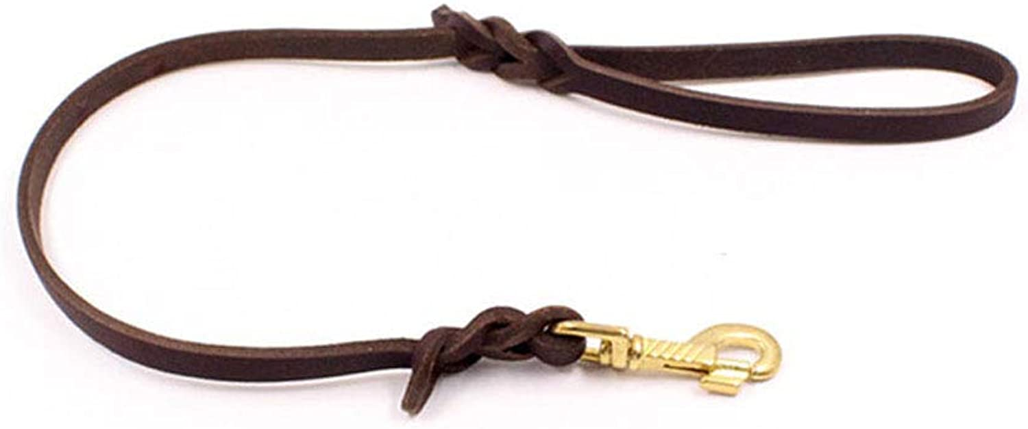 AUSWIEI Dog Leash Outdoor Walking Pet Dog Puppy Traction Rope Brown (color   Brown, Size   1.2  100cm)